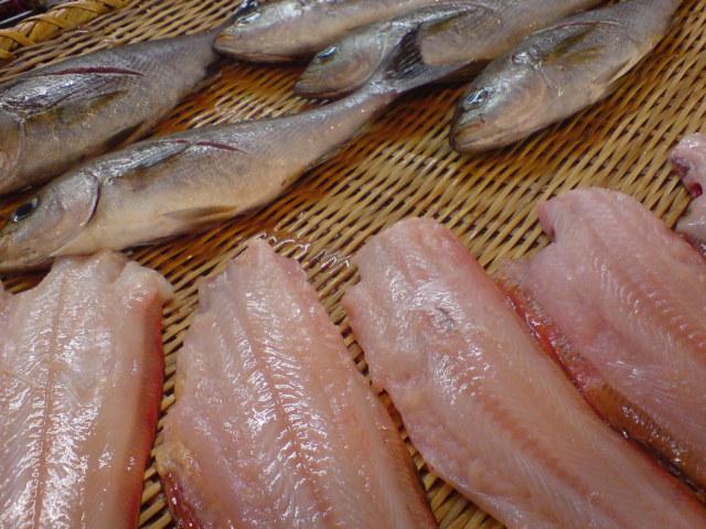 菱田屋の鮮魚